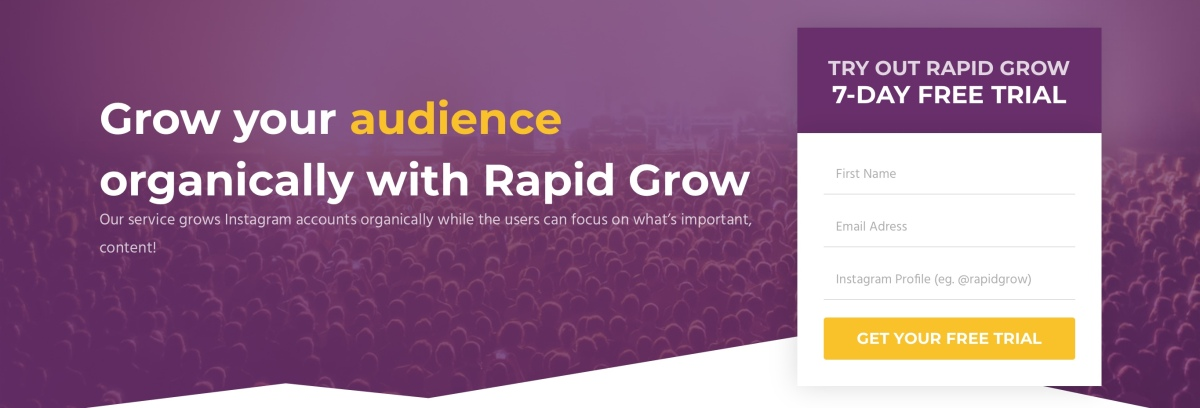 Rapid Grow Review / Growing on Instagram (Part III)